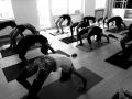 Led Primary Ashtanga Yoga Mitte Köln